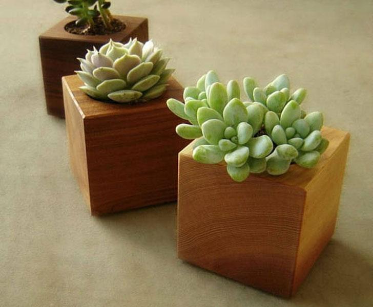 Mini Wooden Office Desk Succulent Planters