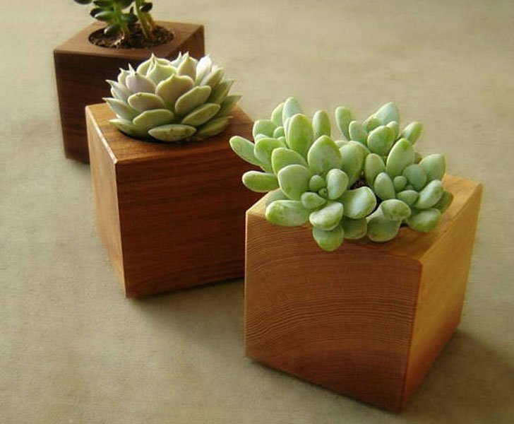 Mini Wooden Office Desk Succulent Planters