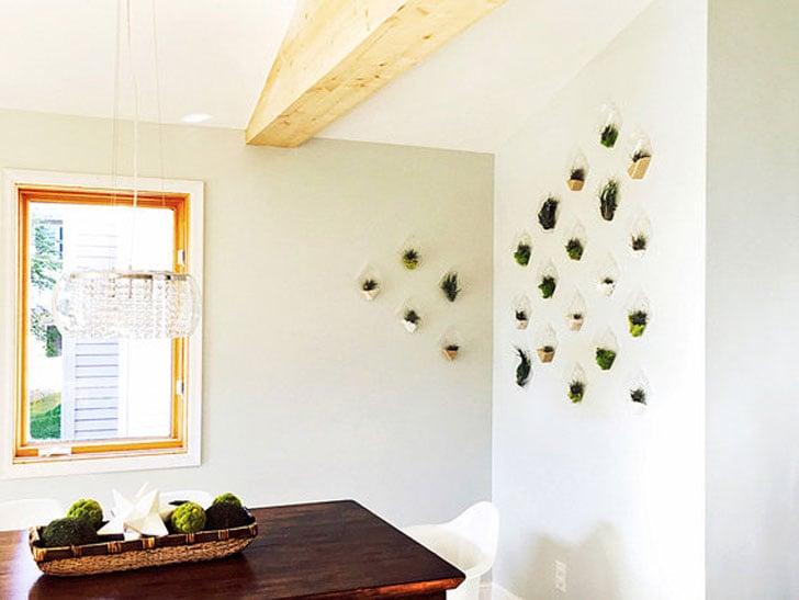 Set of 10 Rhombus Glass Wall Planters