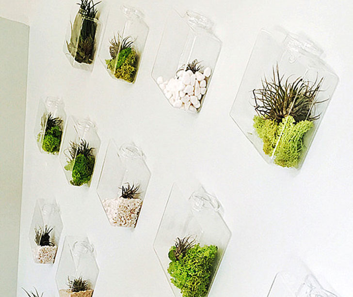 Set of 10 Rhombus Glass Wall Planters