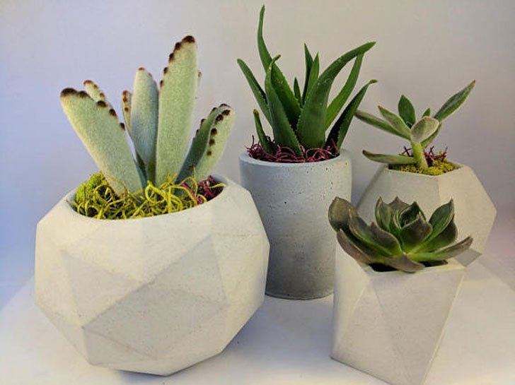 The 4-Piece Geometric Planters Set