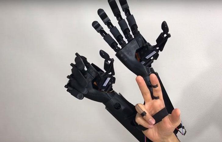 Augmented Double Hands