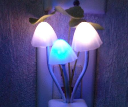 Multi coloured mushroom nightlight
