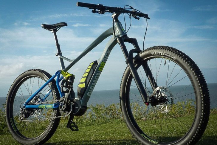 DiamondBack Ranger Electric Mountain Bike