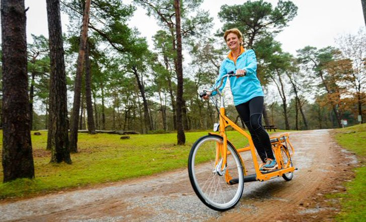 Lopifit Walking E-Bike