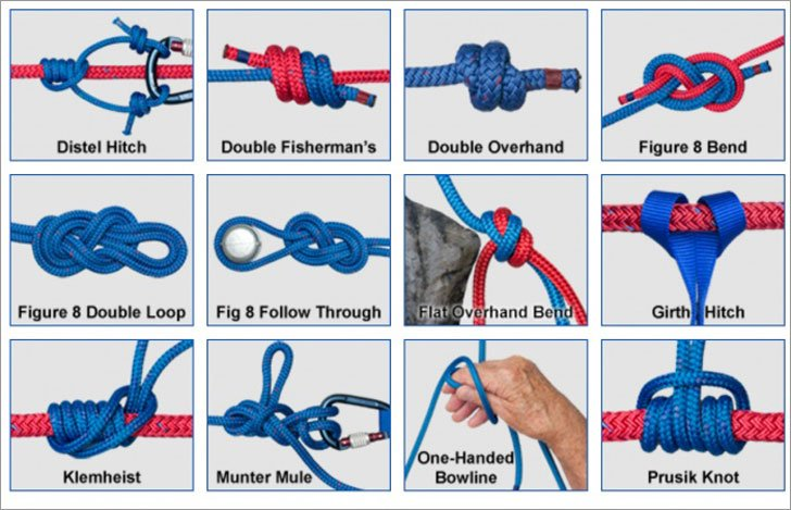 Animated Knots App