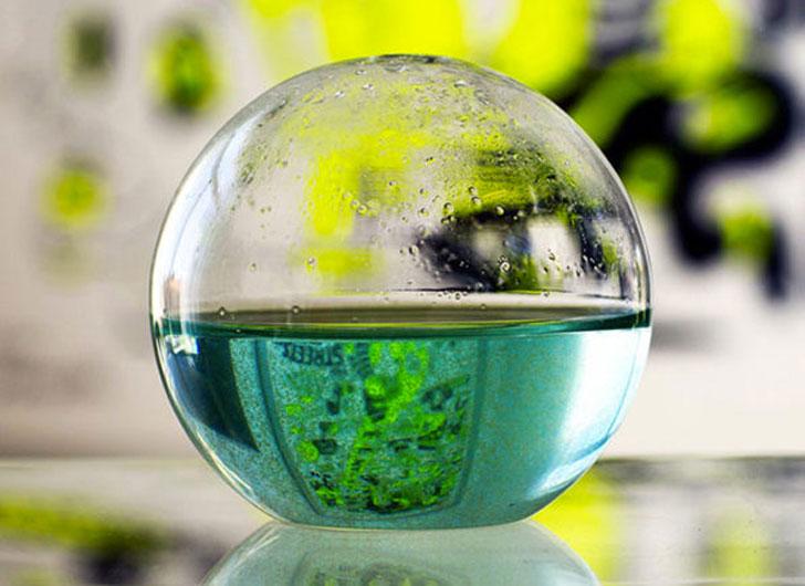 Bioluminescent Plankton Mini Aquarium