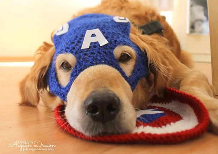 https://awesomestuff365.com/wp-content/uploads/2018/02/Captain-American-Dog-Hat-Mask-1.jpg