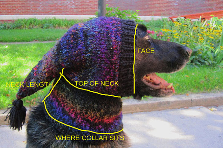 Custom Made Beanie Dog Hats