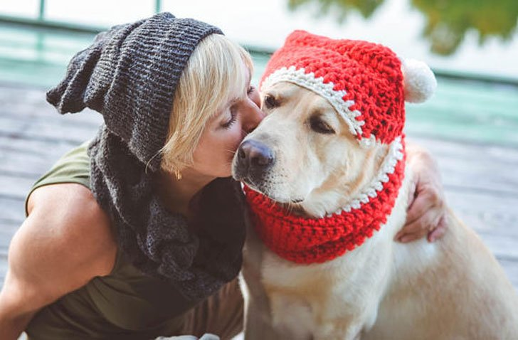 Dog Christmas Scarf Hat Hats For Dogs