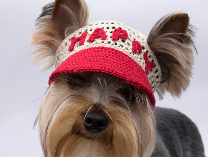 Dogs Happy Crochet Cap