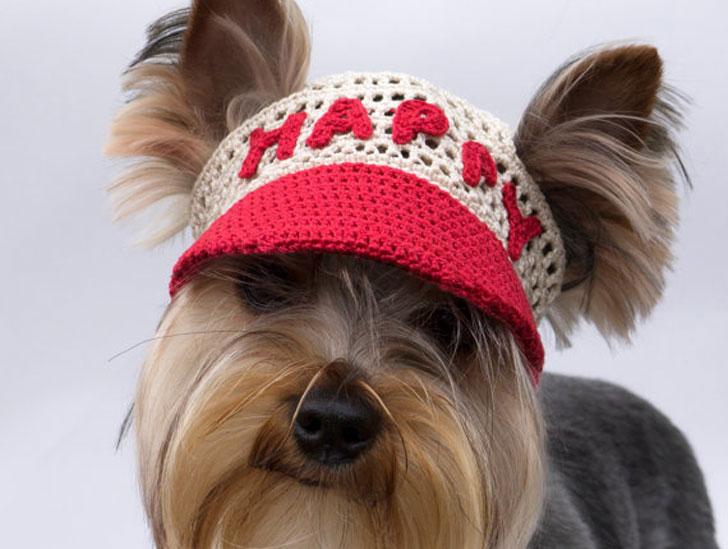 Dogs Happy Crochet Cap