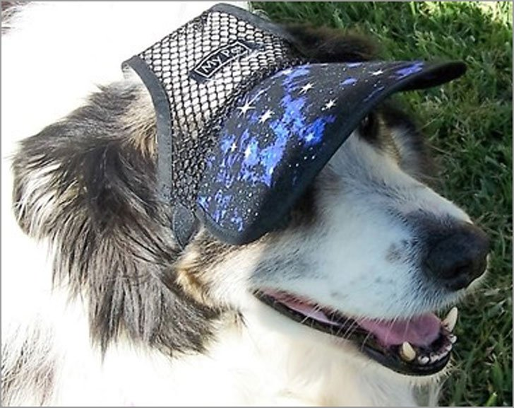 Galaxy Mesh Dog Hat