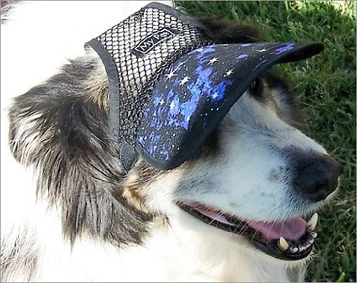 Galaxy Mesh Dog Hat