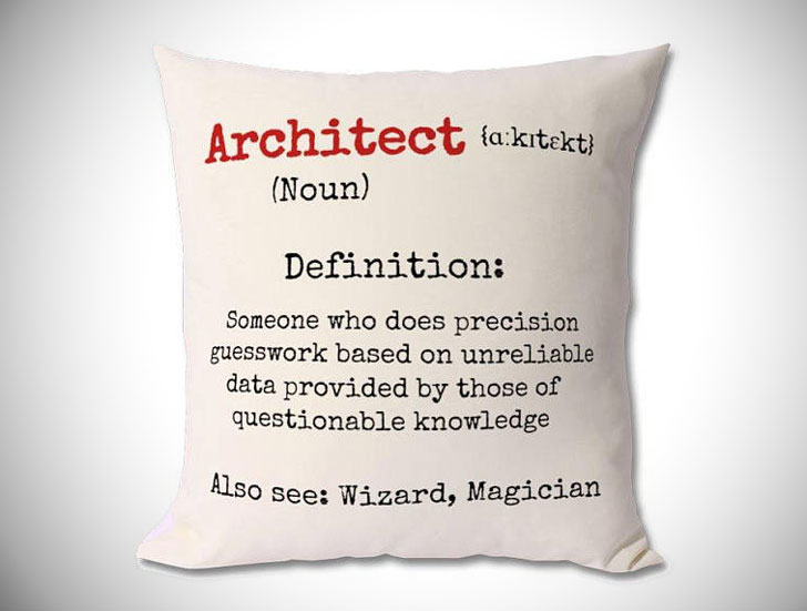 Funny Architect Definition Cushion