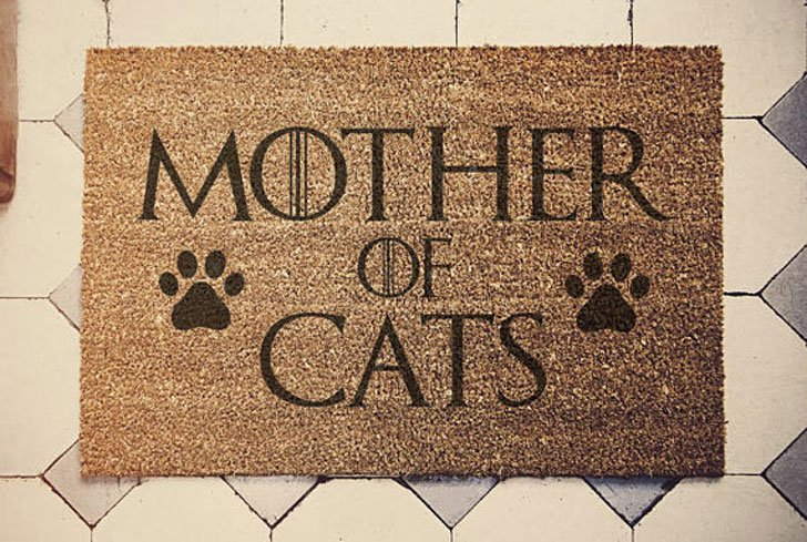 funny cat doormat - Cat Gifts For Cat Lovers