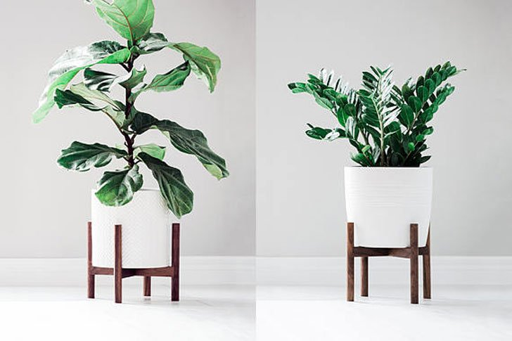 50 best indoor plant stands for all plants awesome stuff 365. Black Bedroom Furniture Sets. Home Design Ideas