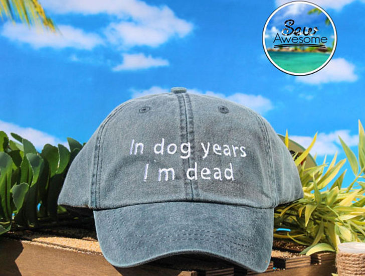 In Dog Years Baseball Cap