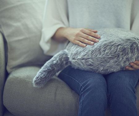 Robotic Pet Pillow