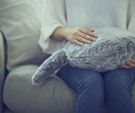 Robotic Pet Pillow