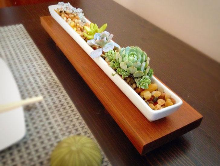 Zen Minimalist Succulent Planter And Stand