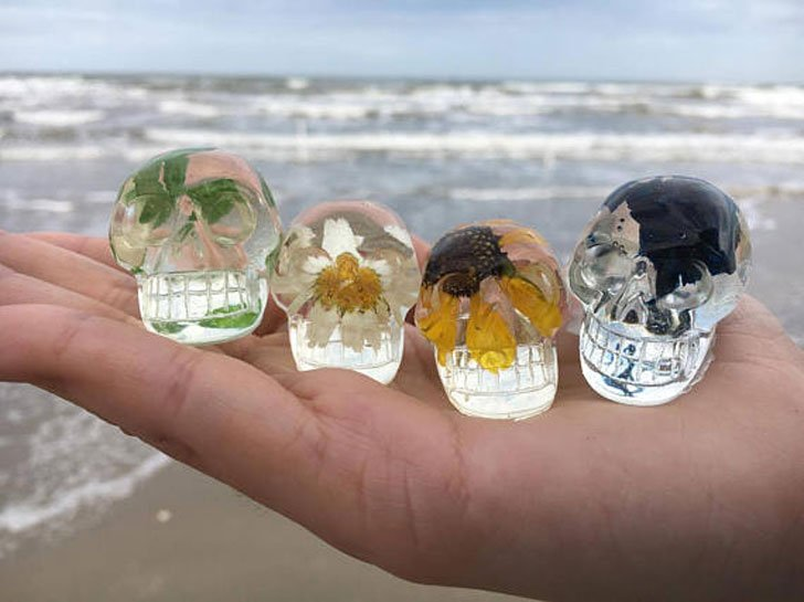 Miniature Preserved Nature Mini Skulls