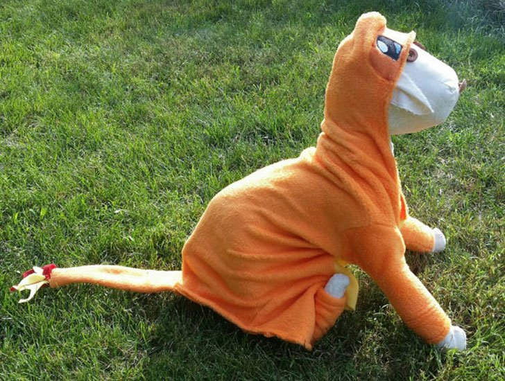Charmander Pokemon Dog Costume