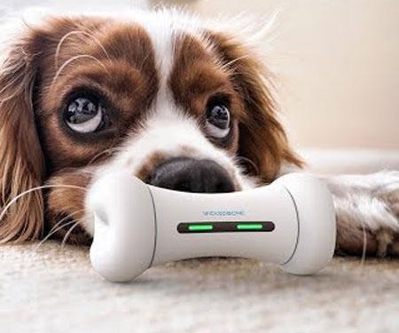 Wickedbone Interactive Smart Dog Toy