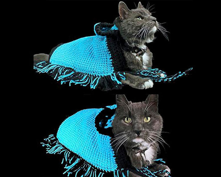 Cat Poncho Sweater