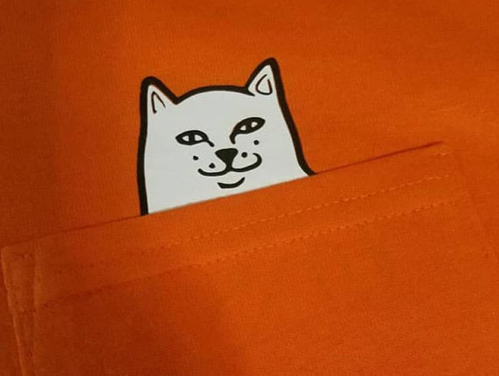 Bad Cat Pocket Shirt