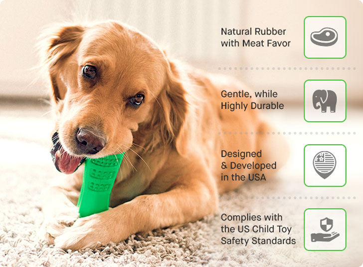 Bristly Toothbrush For Dogs