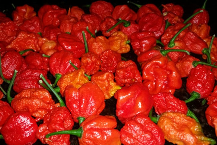 Extra Hot Peppers 3-Combo-Pack