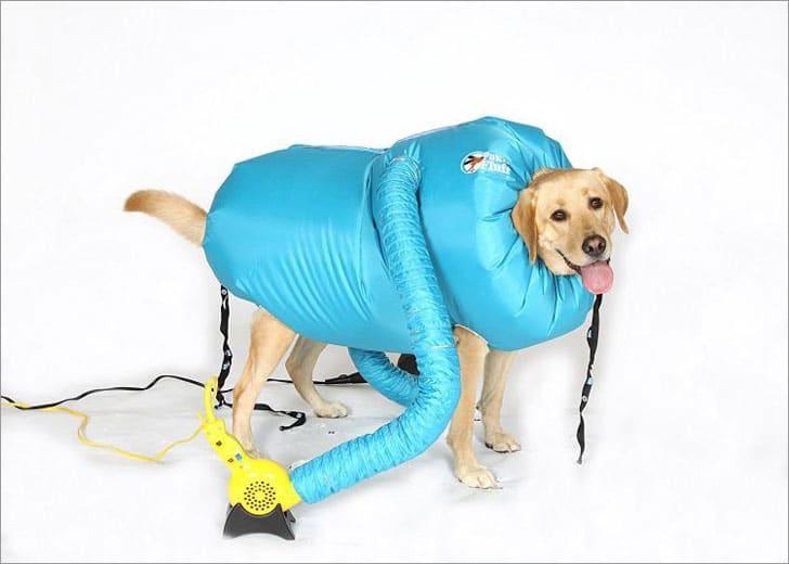 Puff-N-Fluff Dog Dryer