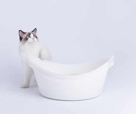 Queek Cat Litter Box