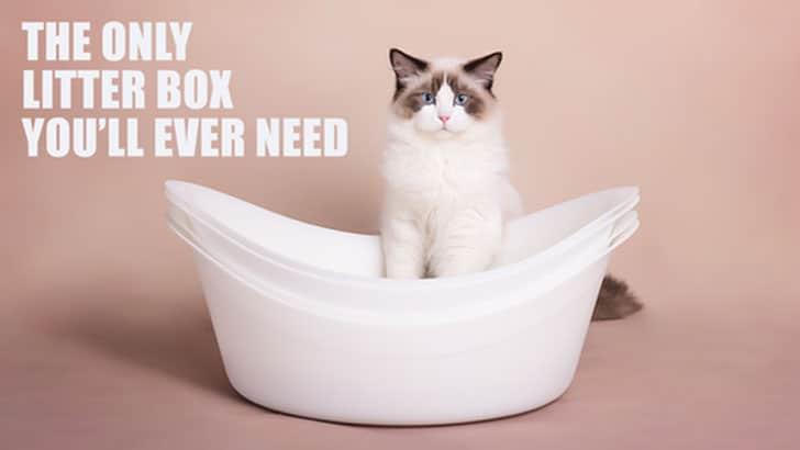Queek Cat Litter Box