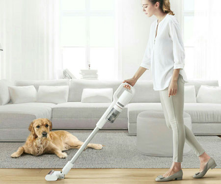 Roidmi F8 Cordless Vacuum