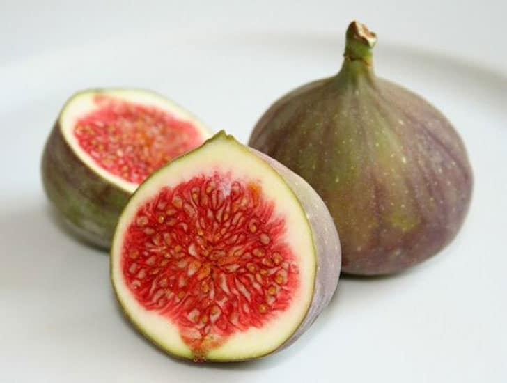 African Fig