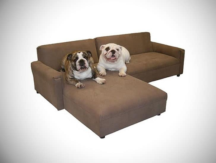 BioMedic Pet Modular Sectional Dog Sofa - unique dog beds
