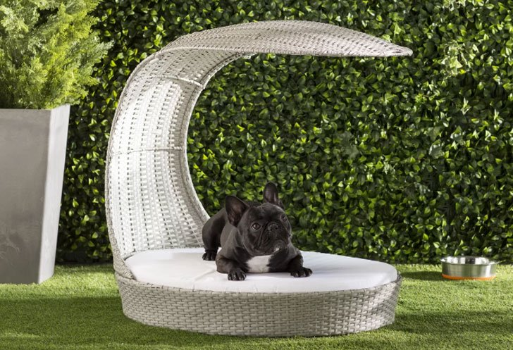 Clara Outdoor Hooded Dog Chaise Lounge - unique dog beds