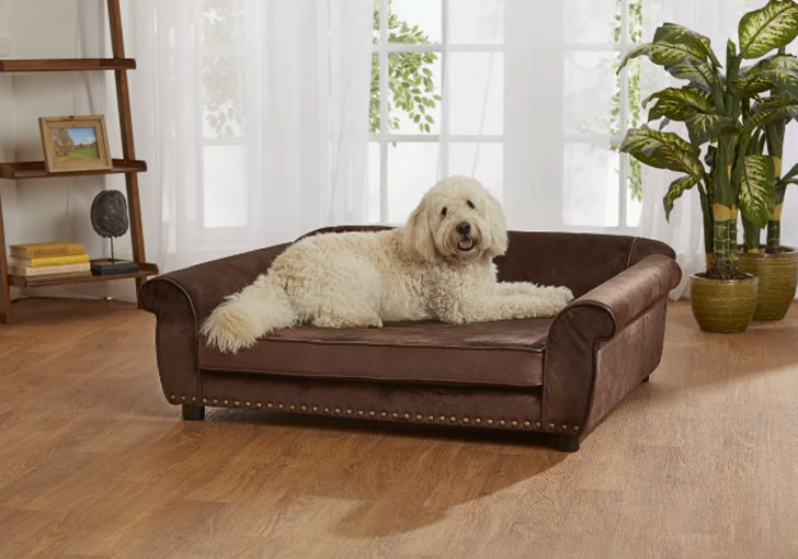 Constantine Dog Sofa with Storage Pocket