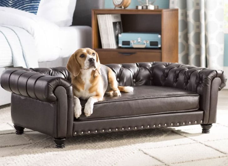 Cornelia Dog Sofa with Solid Foam Cushion