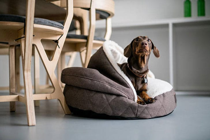 Hooded Dog Beds with Faux fur Cover