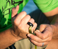 Line Cutterz Fishing Line Ring