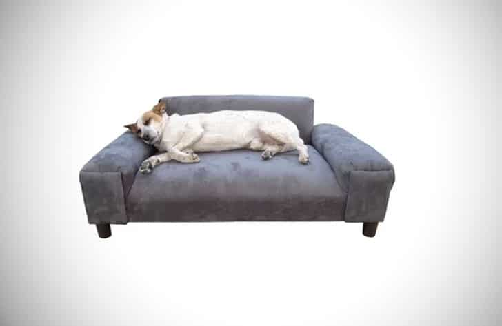 Lantana BioMedic Gustavo Dog Sofa
