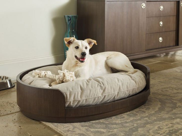 Soho by Rachael Ray Home Dog Bed - unique dog beds