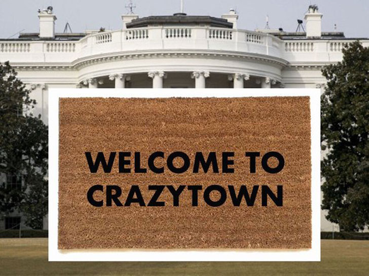 Welcome to Crazytown Doormat
