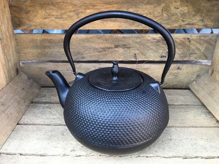 Cast Iron Japanese Tea Pot