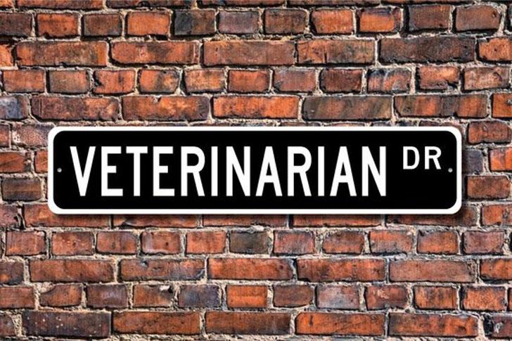 Veterinarian Custom Street Sign
