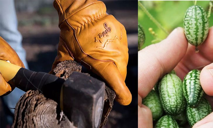 30+ Best Gifts For Farmers Thoughtful & Unique