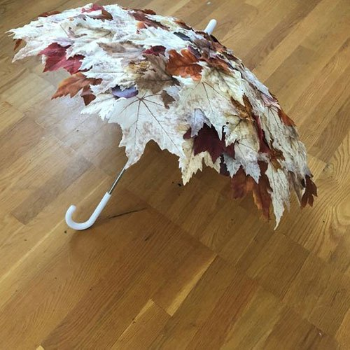 Nature-Inspired Umbrellas
